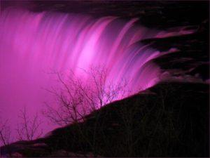 Karen Grose - Author of the Dime Box in Niagara Falls